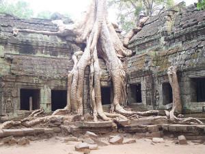 Angkor-Wat-Cambodia-ta-prohm-red-betty-black
